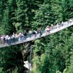 ツアーで行くか、自力で行くか? 徹底比較、キャピラノ吊り橋、グラウスマウンテン編