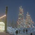 スキーなしでも存分に楽しめる!冬のグラウスマウンテンで雪遊び