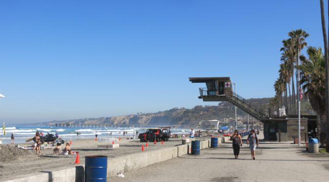 サンディエゴ旅行記8 ラホーヤビーチとバーチ水族館