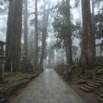 How to access World Heritage Mt. Koya. Japan Rail Pass can be used to get Mt. Koya?