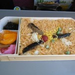 Ekiben (Boxed meal at the station or in the train) in Hokkaido