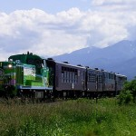 Furano Biei Norokko train takes you one of most popular spot, Furano and Biei. (C) 800px-Norokkogou-furano-biei / Birdman