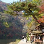 How to choose discount railway ticket and pass in Kansai (Kyoto, Osaka, Kobe, Nara) area