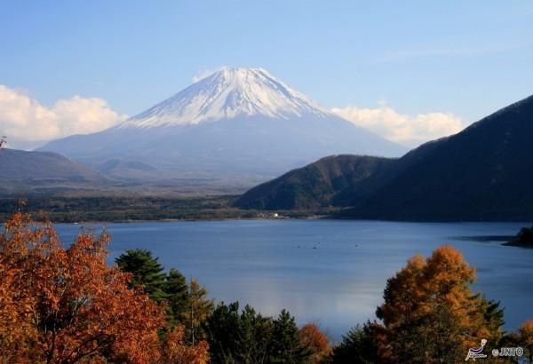 Mt Fuji from Lake Shoji  ©Akira Okada/©JNTO