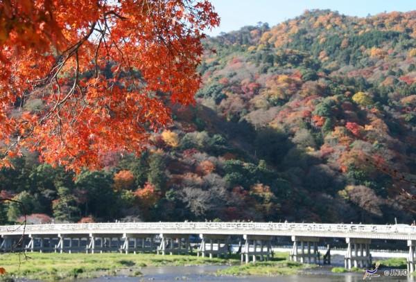 Togetsukyo bridge is the highlight in Arashiyama. ©Akira Okada/©JNTO