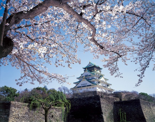 Osaka castle is one of popular spot to see cherry blossom in Osaka. ©Osaka Government Tourism Bureau/©JNTO