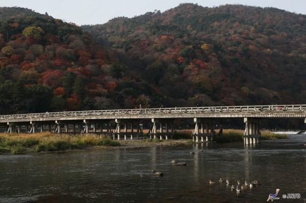 Togetsukyo bridge in Arashiyama, Kyoto. ©Yasufumi Nishi/©JNTO