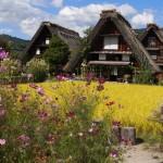 Takayama – Hokuriku Area Tourist Pass. Perfect deal to get Takayama, Kanazawa, Shirakawago from Nagoya or Osaka