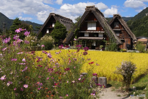 World Heritage Shirakawago has lots of traditional Japanese residences. ©Akimasa Yuasa/©JNTO
