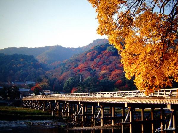 Arashiyama is very popular in any season.  © soryofu/© JNTO