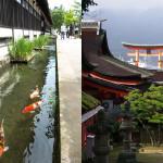 Hiroshima Yamaguchi Area Pass. Designed for the tourists who travel to Hiroshima from Hakata.