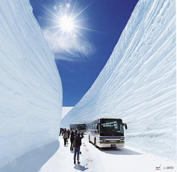 Snow Walls is very very popular on Tateyama Kurobe Alpine Route.  (C) Tateyama Kurobe  Kanto / JTOA