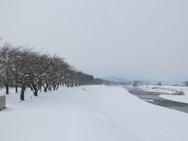 2016 winter Japan trip 173