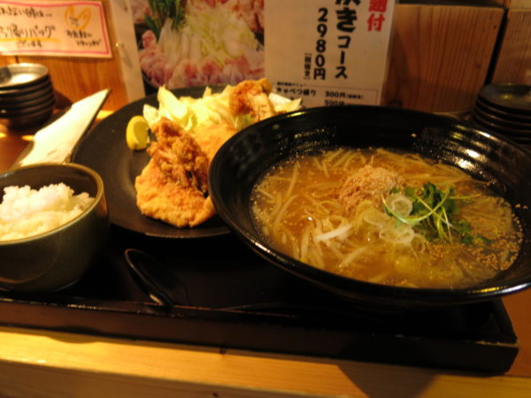 2016 winter Japan trip 1041
